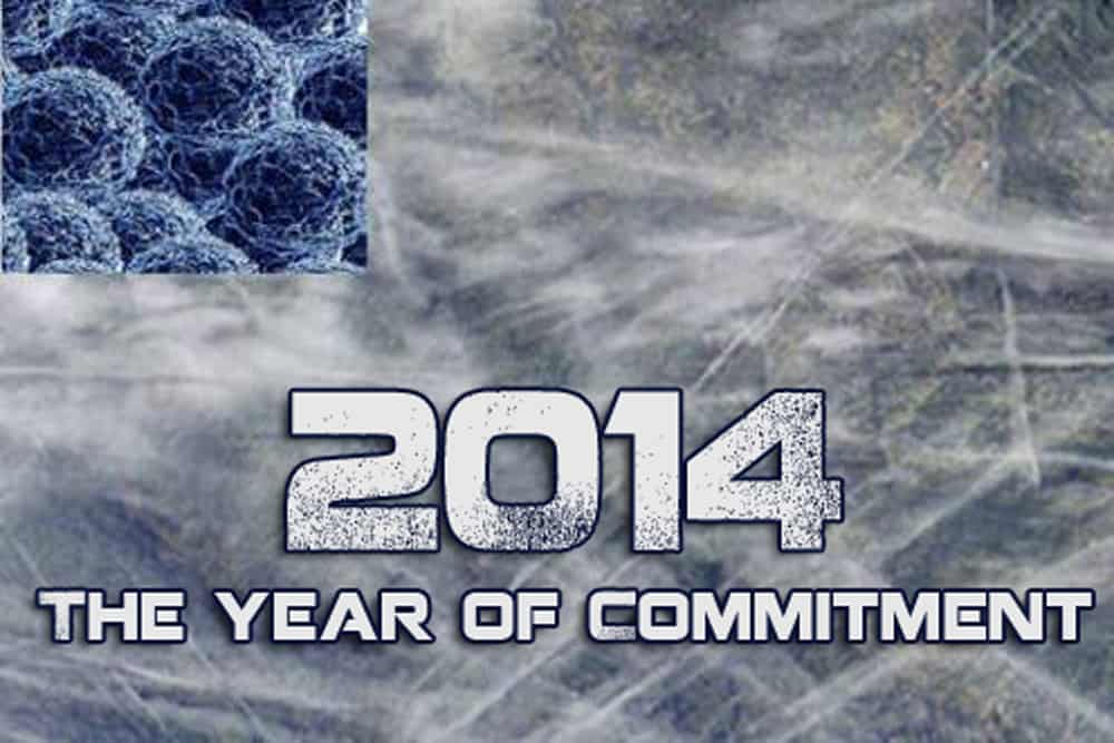 2014 A Year For Committment