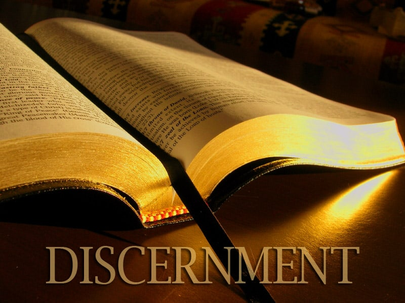 Discernment: Spiritual Survival for the Church Today