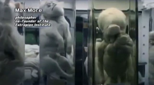 Horrifying Human Animal DNA Experiments