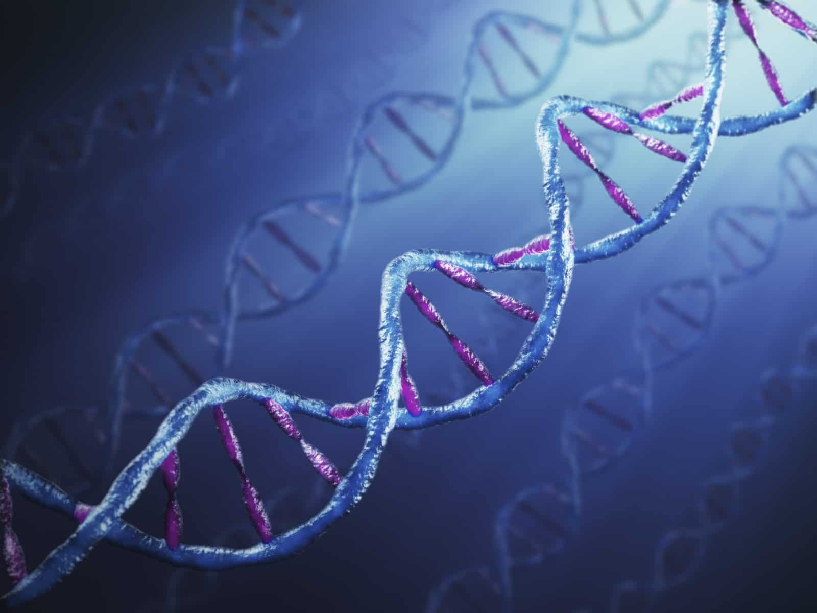 Will Genetics Play A Role In The Coming War On True Believers?