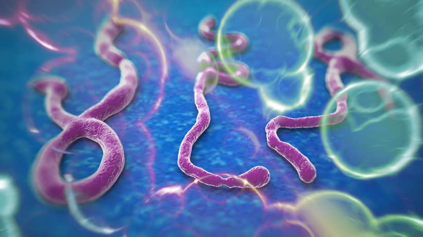 Ebola Patent? Why Does The CDC Own A Patent On Ebola 'Invention?'
