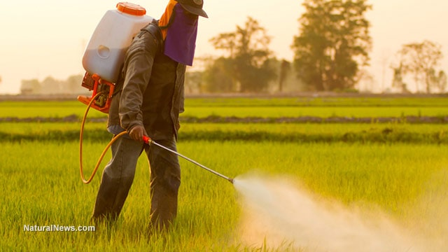 "Monsanto: What parents need to know ""By 2025 one in two children will be autistic"""