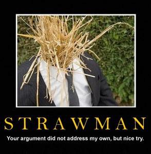 Strawman-1005x1024