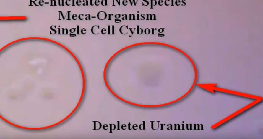 Warned Against Sharing This Microscopic Analysis of US Artificial Snow – See What the DOD is HIDING!