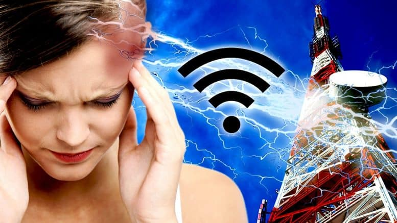 Electromagnetic Fields And Their Effects