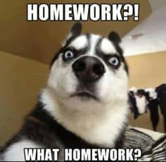 Image result for homework meme
