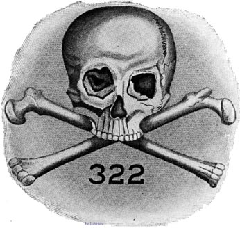 Image result for skull and bones