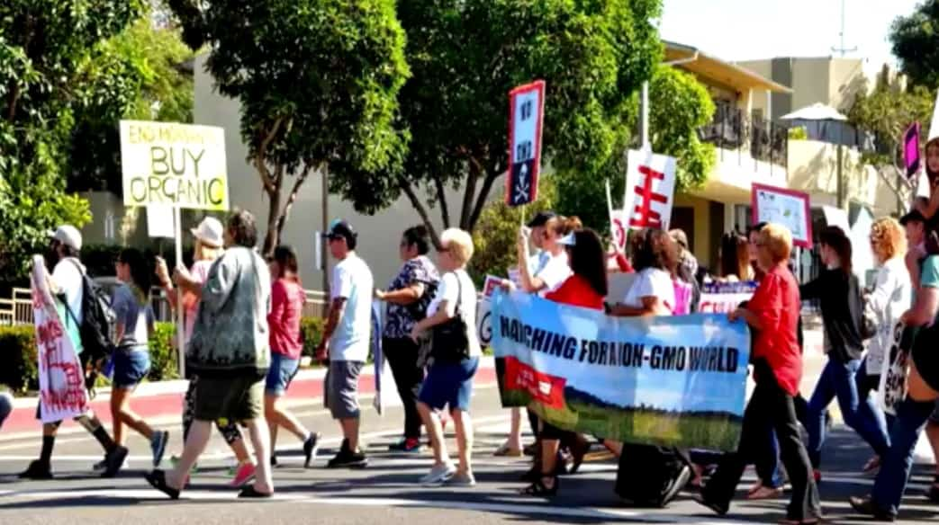 Must Watch Video: Mom's Across America Fight Back Against GMO's