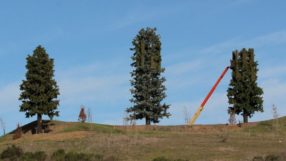 5G Tower Trees Coming to YOUR TOWN