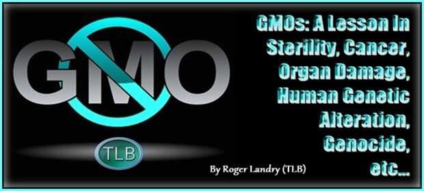 GMOs: A Lesson In Sterility, Cancer, Organ Damage, Human Genetic Alteration, Genocide, etc…