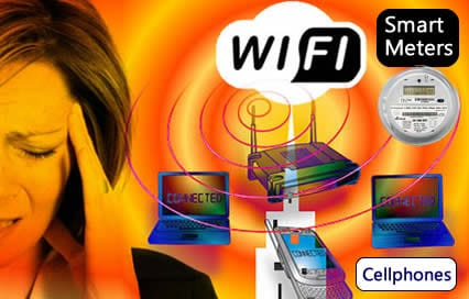 Neurosurgeon Shows How Low Levels of Radiation Such As Wi-Fi, Smart Meters And Cell Phones Cause The Blood Brain Barrier To Leak