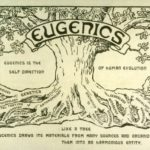 Is Abortion Eugenics?