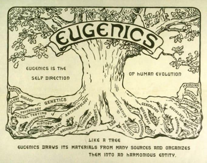 Is Abortion Eugenics?