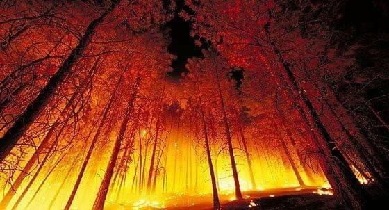 More Anomalies With the Fires