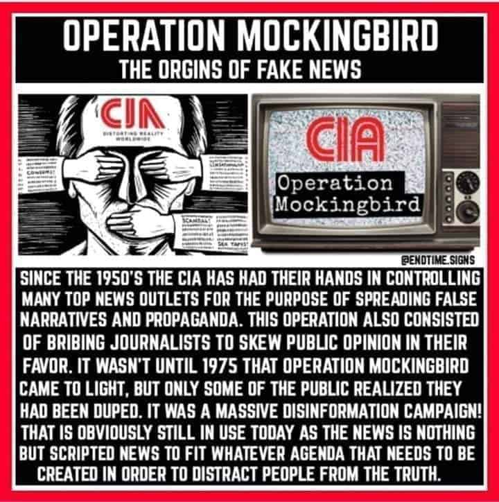 The REAL FAKE NEWS: CIA Behind Media PROPAGANDA