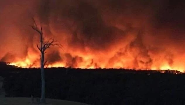 Australia Fires: What is Really Happening
