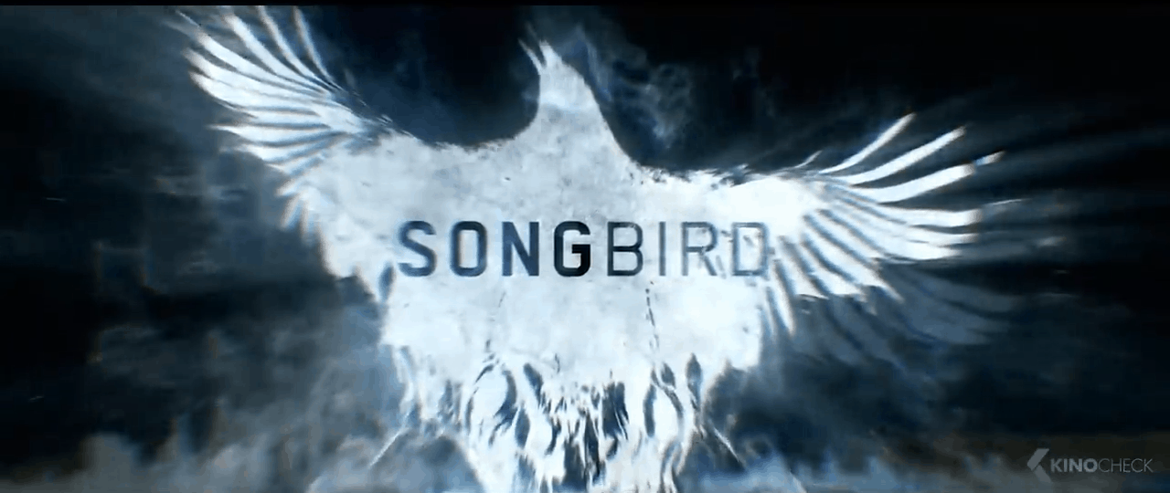 Songbird: the real time movie